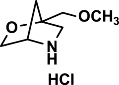 (1S,4S)-1-Methoxymethyl-2-Oxa-5-Azabicyclo[2.2.1]heptane Hydrochloride